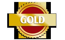 Memories of India Durham gold award winners